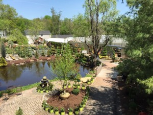 Nursery, Plantings, Patios, design, Scovills landscape, landscape design, landscaping, landscapes, landscape patio design